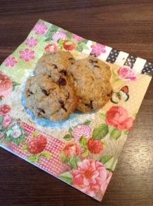 DIY Vegan - Schoko Kekse